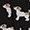 Black Jack Russell
