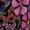 Spunkwear Posies/Hot Pink Buckle