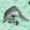 Pinwheel Spearmint