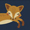 Eta Playing Foxes Navy