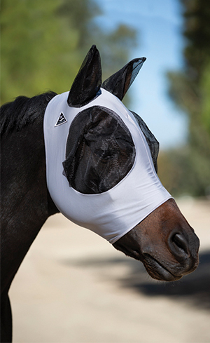 Fly Masks Image
