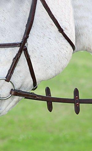 Bridle Parts & Accessories Image
