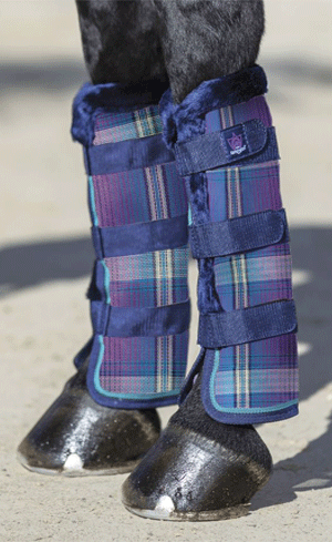 Fly Boots Image