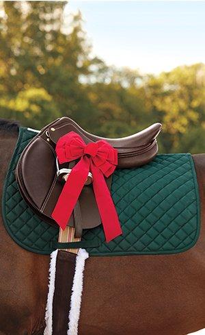 Horse Tack Image