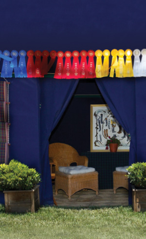 Stall Curtains Image