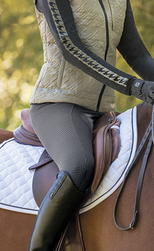Winter Riding Pants Image