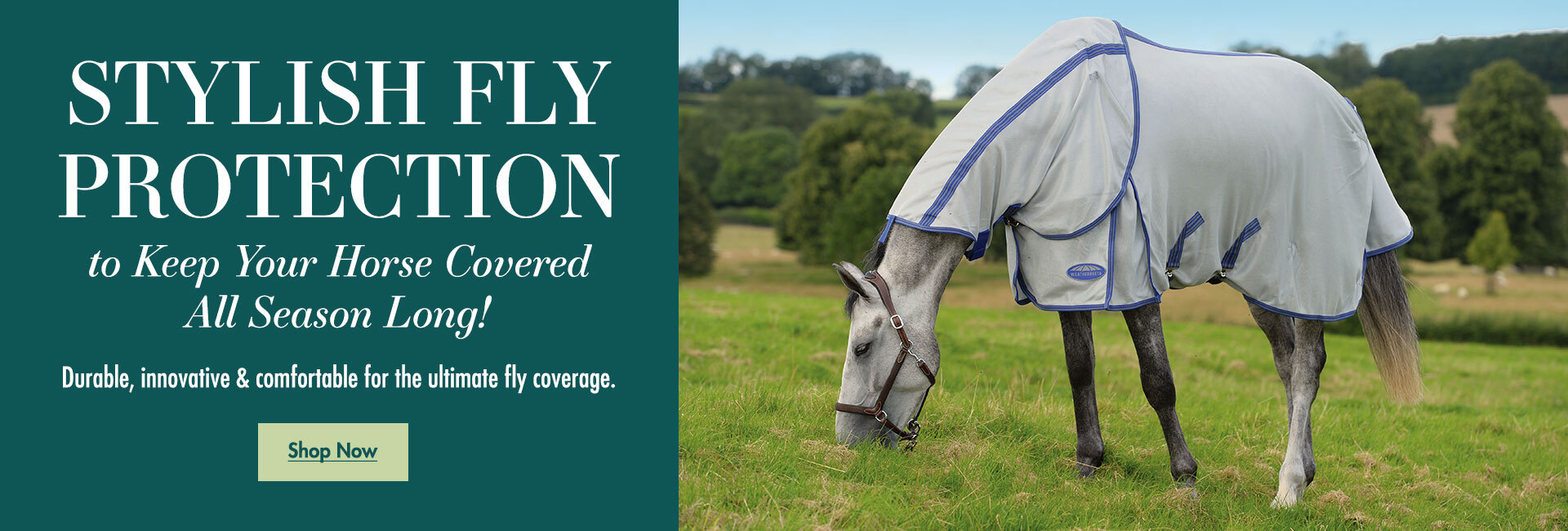 Stylish Fly Protection to Keep Your Horse Covered All Season Long!