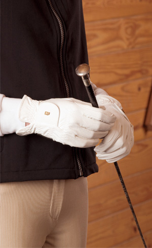 Riding Gloves Image