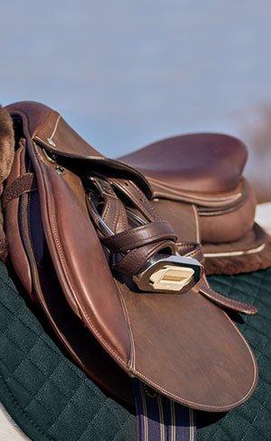 Saddles Image