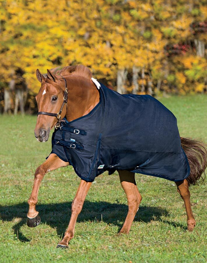 20% OFF Rider´s International® by Dover Saddlery® Supreme Turnout Sheet