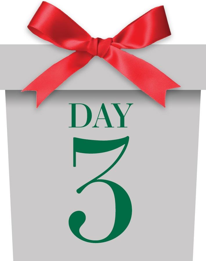 12 Days Day 3 Package - Coming Soon!
