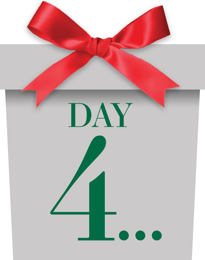 12 Days Day 4 Package - Coming Soon!