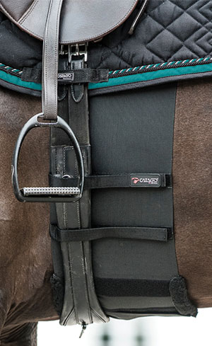 Saddle Accessories Image