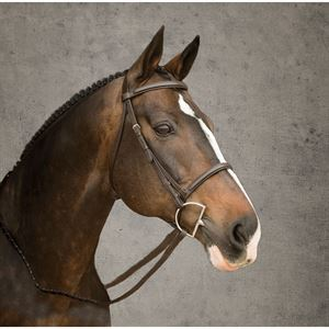 Suffolk® by Dover Saddlery® Plain Raised Bridle