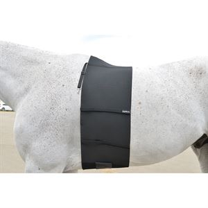 EquiFit® BellyBand™