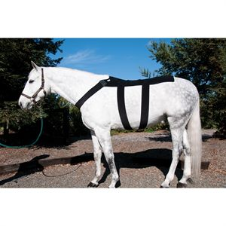 Ice Horse® Back Blanket