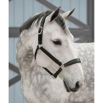 Dover Saddlery® InDulge™ Classic Raised Halter