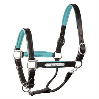 Perri's® Padded Leather Pony Halter with Nameplate