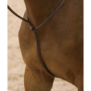 Dyon® Standing Martingale