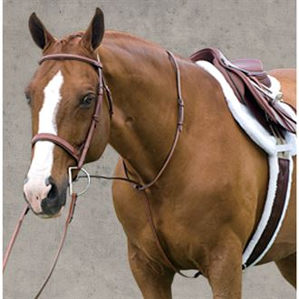 Rodrigo Raised Fancy Stitched Martingale