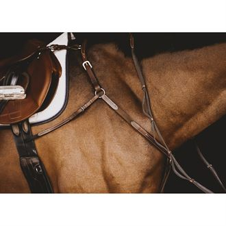 Arion Raised Five-Point Breastplate with Martingale