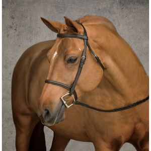 Suffolk® by Dover Saddlery® Pony Bridle