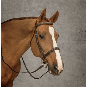 Dover Saddlery® Hunter Bridle