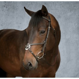 Dover Saddlery® Figure-8 Bridle