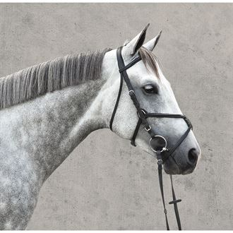 Vespucci Plain Raised Figure-8 Bridle