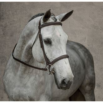 Dover Saddlery® Single Crown Hunter Bridle