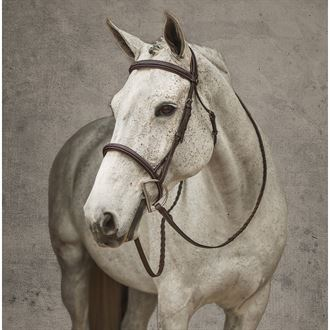 Henri de Rivel Pro Mono Crown Fancy-Stitched Padded Bridle with Laced Reins