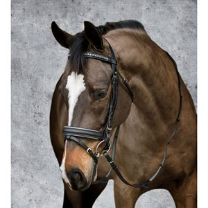 Dover Saddlery® Crystal Dressage Dressage Bridle