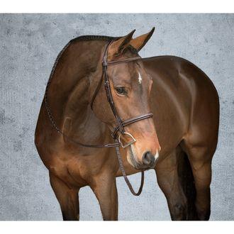 Dover Saddlery Premier Hunter Bridle