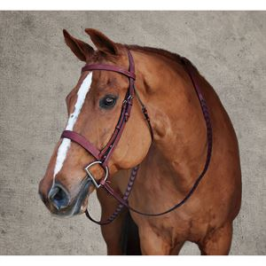 Dover Saddlery® Premier Hunt Bridle