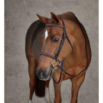 Dover Saddlery® Premier Padded Pony Hunter Bridle