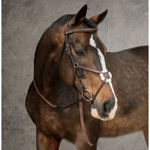 Dover Saddlery® Classic Figure-8 Bridle