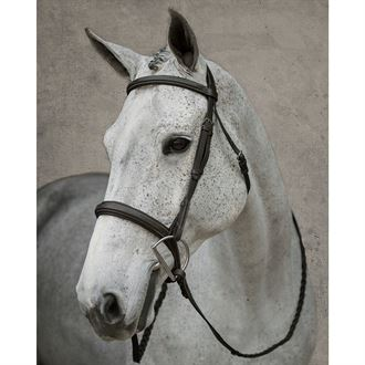 Dover Saddlery® Wide Nose Hunter Bridle