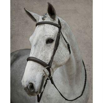 Dover Saddlery® Wide Nose Hunter Bridle