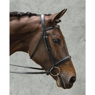 Suffolk® by Dover Saddlery® Single Crown Classic Dressage Bridle