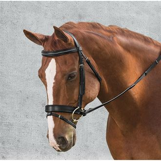 Suffolk® by Dover Saddlery® Single Crown Crystal Dressage Bridle