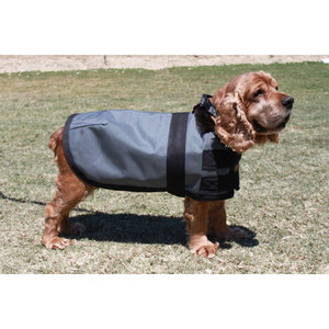 Blue Ribbon Custom Winter Dog Jacket - XXS, XS, S, M