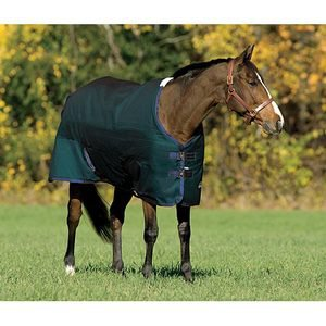 Rider's International® by Dover Saddlery® Medium-Weight Turnout Blanket