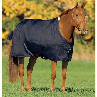 Rider's International by Dover Saddlery® Turnout Sheet