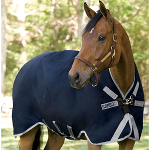 Horse Blankets Turnouts Fly Sheets Amp Stable Blankets