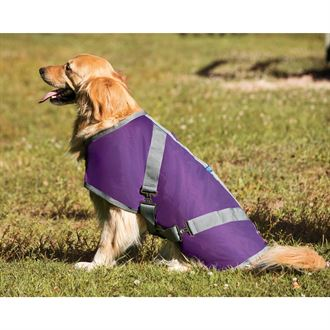 Rider's International® by Dover Saddlery® Fleece-Lined Dog Blanket