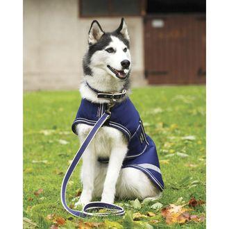Amigo® Dog Rug