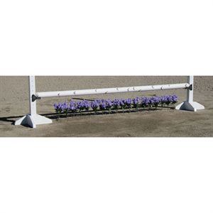 Burlingham Sports Flower Strip- 12