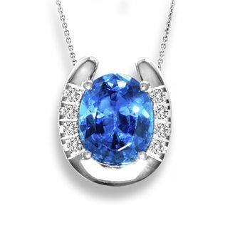 Kelly Herd Stone Horseshoe Necklace