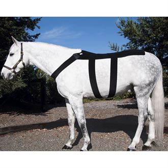 Ice Horse® Pony Back Blanket