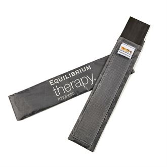 Equilibrium Therapy Magnets
